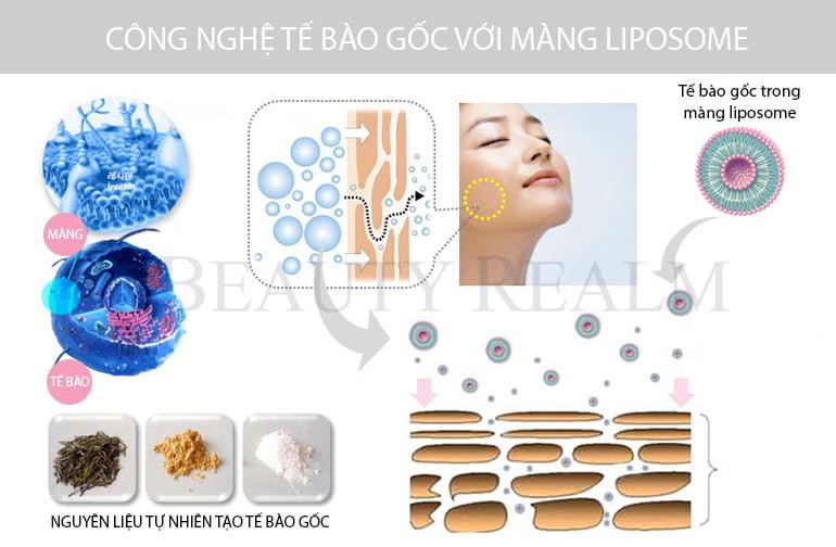 Tế bào gốc trong mỹ phẩm với công nghệ màng bọc Liposome