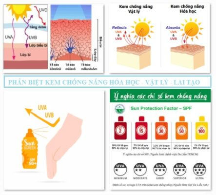Phân biệt các dòng kem chống nắng
